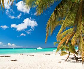 Book Cruise to Bahamas by Bahamas Landing